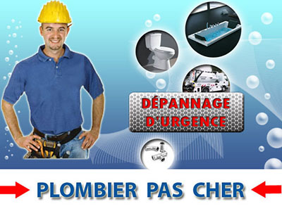 Toilette Bouché Frepillon 95740